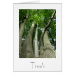 Trees Greeting Card Design