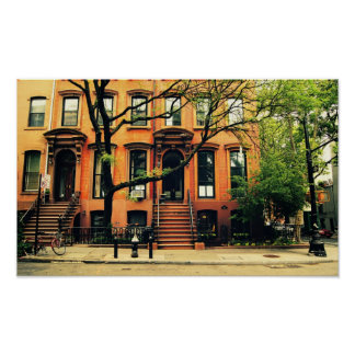 Trees Grow in Brooklyn, Small Poster