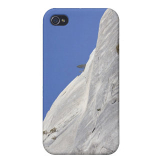 Trees growing in hostile granite environment cover for iPhone 4