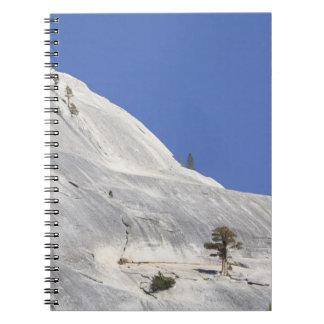 Trees growing in hostile granite environment notebook