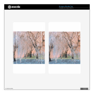 Trees Ice Covered Willow Skin For Kindle Fire