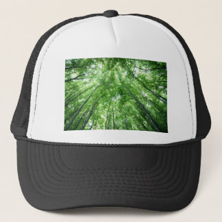 Trees in a forest from the bottom view trucker hat