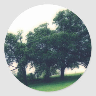 Trees in a Pasture Round Stickers