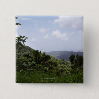 Trees in a rainforest, El Yunque Rainforest, Pinback Button