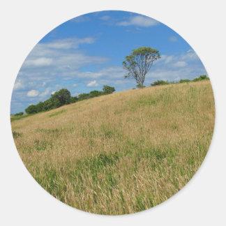 Trees in a Wheat Field Sticker