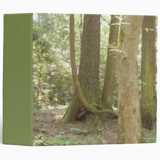 Trees in an Awkward Position 3 Ring Binder