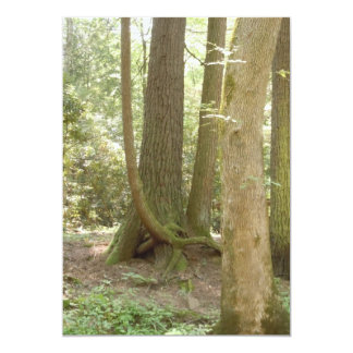 Trees in an Awkward Position Card