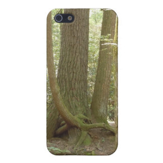 Trees in an Awkward Position Case For iPhone SE/5/5s