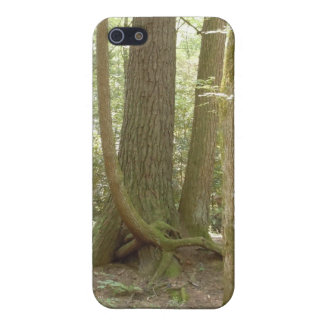Trees in an Awkward Position iPhone SE/5/5s Cover