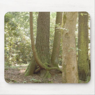 Trees in an Awkward Position Mousepads