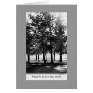 Trees In Black And White Card