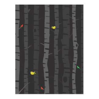 Trees in Fall Post Card