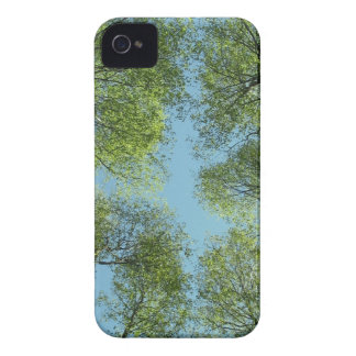 Trees in Finland iPhone 4 Cover