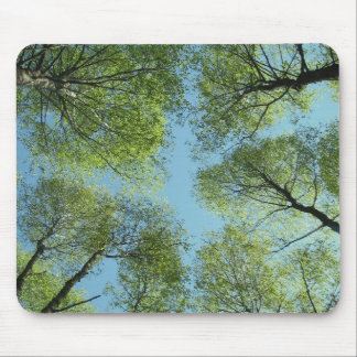 Trees in Finland Mousepad