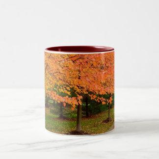 Trees in Flames Two-Tone Coffee Mug