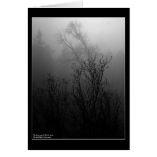 Trees in Fog Card