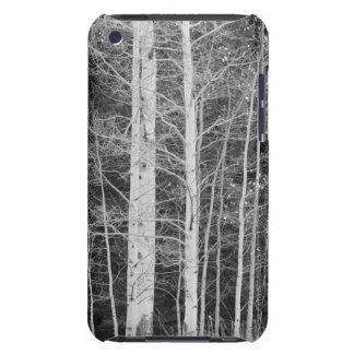 Trees in forest during winter iPod touch case