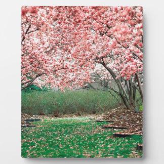 Trees In Full Bloom Photo Plaque