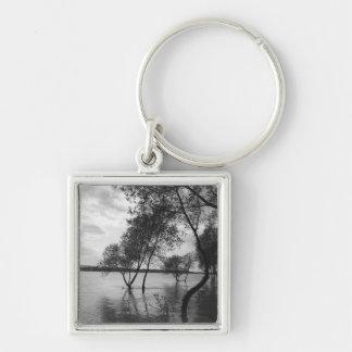 Trees in lake keychain