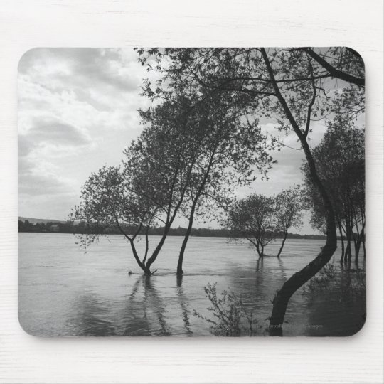 Trees in lake mouse pad