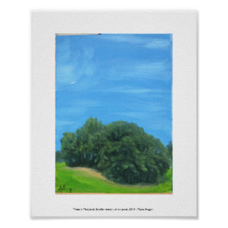 Trees in Maryland, Smaller Version, 2013 Print