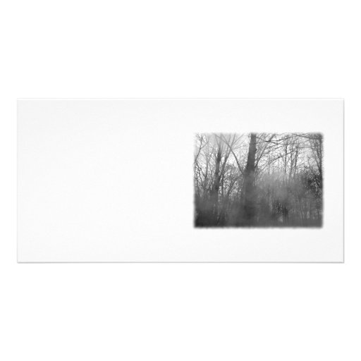 Trees in Mist. Black and White. Photo Card