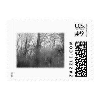 Trees in Mist. Black and White. Postage Stamp