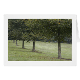 Trees in Schenley Park Stationery Note Card