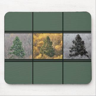 Trees in Season Mousepad
