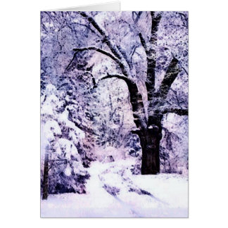 Trees in Snow Card