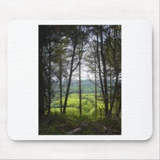 trees in the countryside mouse pad