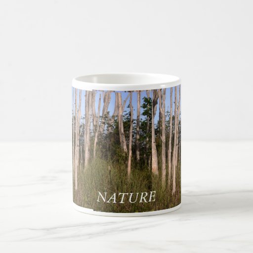 Trees in the Everglades Mugs