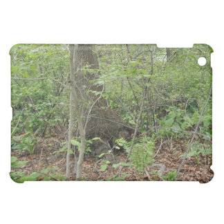 Trees in the forest case for the iPad mini
