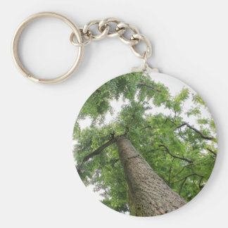 trees in the forest keychain