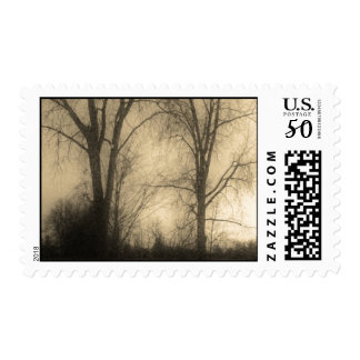 Trees in the Mist Stamp