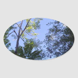 Trees In The Sky Oval Sticker