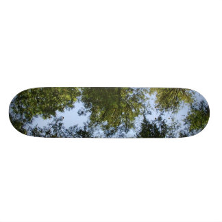 Trees in the Sky Skateboard Deck