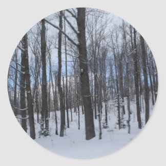 Trees in Winter Classic Round Sticker