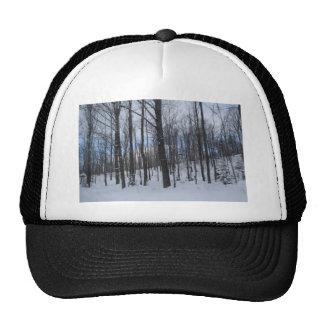 Trees in Winter Trucker Hat