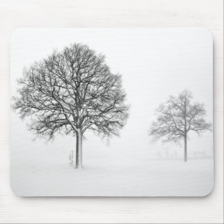 Trees in Winter Landscape Mouse Pad