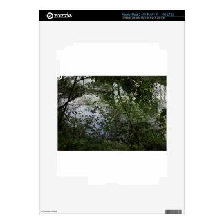 Trees iPad 3 Decals