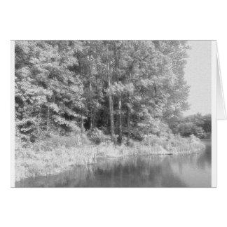 Trees.jpg Card