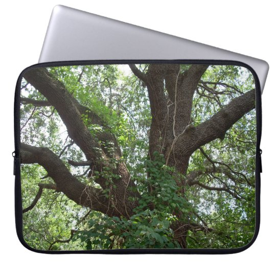 TREES LAPTOP COVER 2 BY FLOYD LEWIS