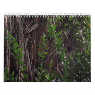 Trees Leaves and Plants Wall Calendar