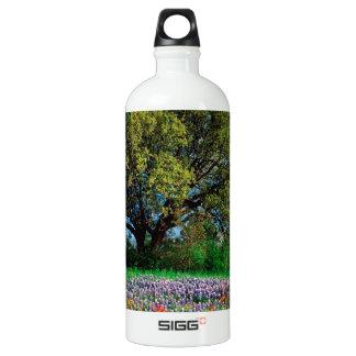 Trees Live Oak Among Texas Bluebonnets Aluminum Water Bottle