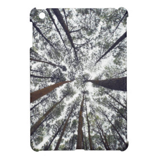 Trees Looking Up Case For The iPad Mini