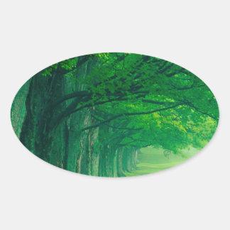 Trees Lush Summer Louisville Kentucky Oval Sticker