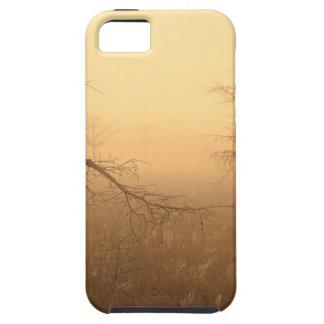 Trees Morning Dew Everglades Florida iPhone 5 Case