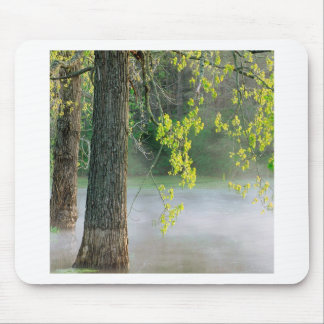 Trees Morning Fog Percy Warner Tennessee Mouse Pad