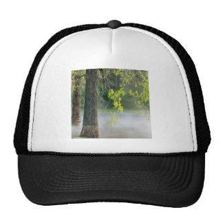 Trees Morning Fog Percy Warner Tennessee Trucker Hat